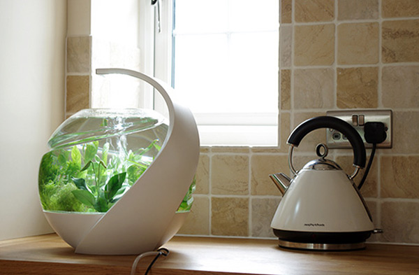 Avo self cleaning fish tank conceptcus for How to keep fish tank clean without changing water