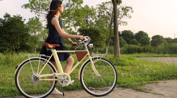 Vela Electric Bike