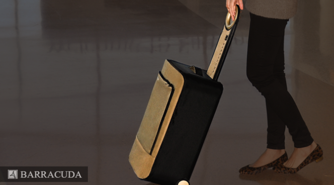 Barracuda – Collapsible Luggage