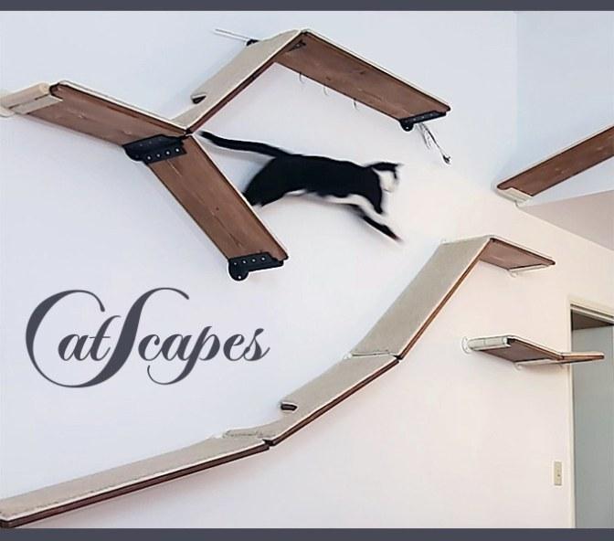 CatScapes – Cat Shelves